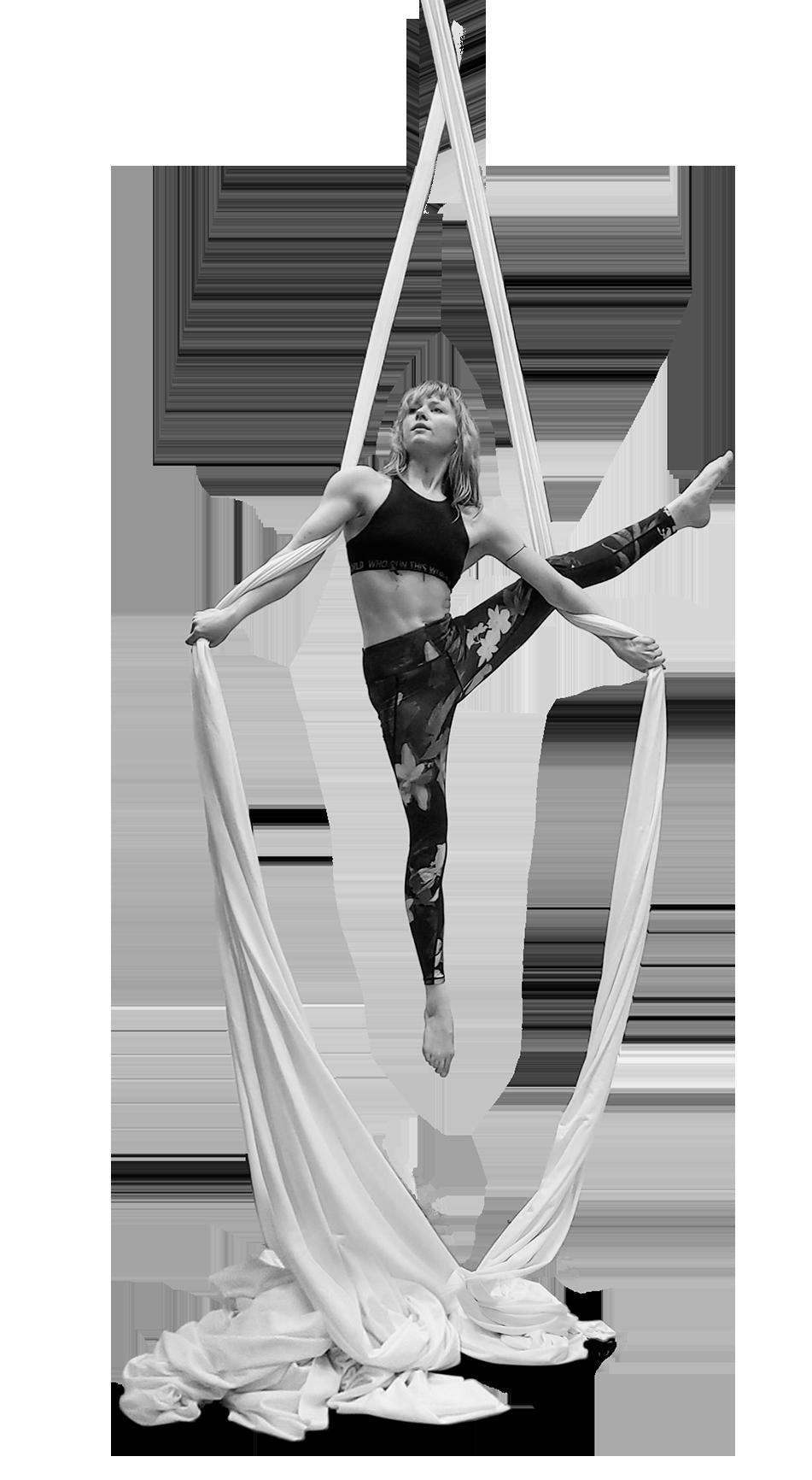 Cirque De Silk Aerial Performer