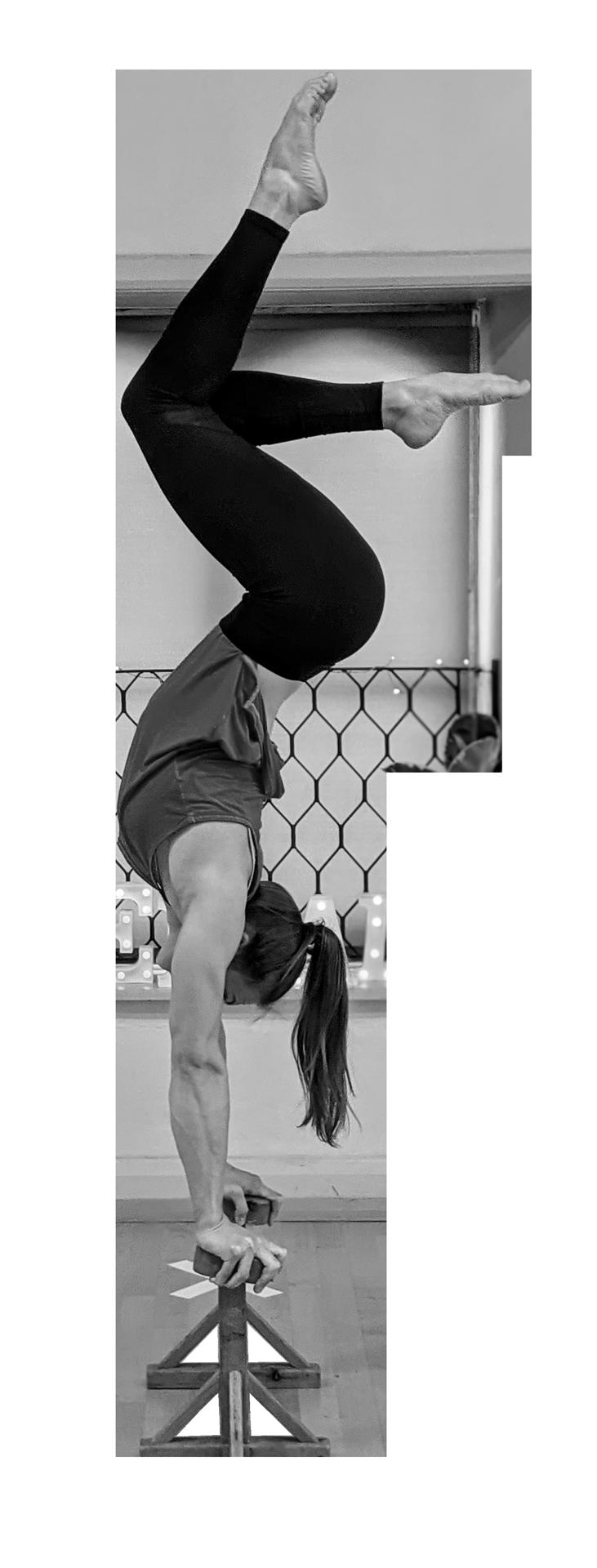 Cirque De Silk Hanstands